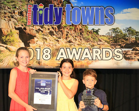 Environment awards collected by city and remote school