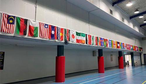 Sanderson flags its diversity