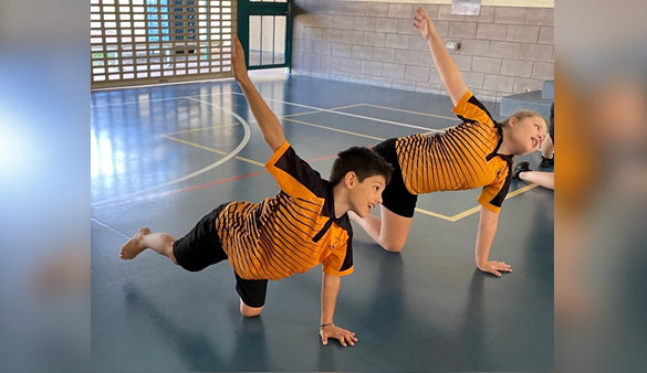 Bees ballet aims for STEAM mastery